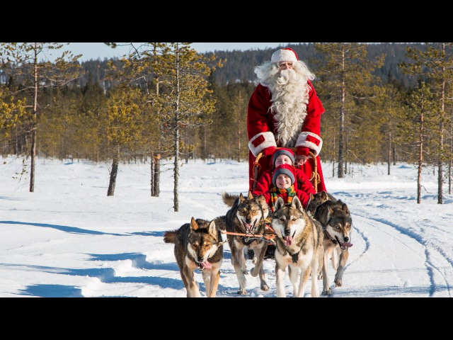 Santa Claus and husky dogs in Lapland - huskies with Father Christmas in Finland Rovaniemi