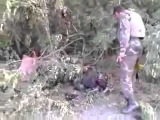 Украинские герои уничтожили колонну сепаров.