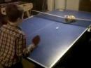 Ping Pong Cat