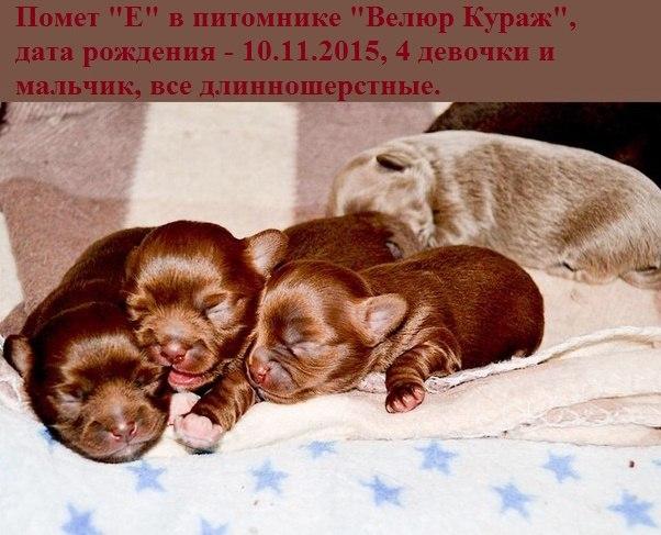 https://pp.vk.me/c629106/v629106493/1e6dc/hV4QD_p1rqQ.jpg