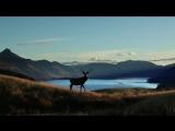 Красота и умиротворение в горах. Iceland