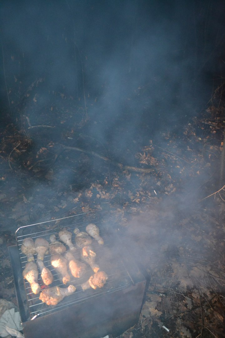 23-24.11.15 г. Ночь в лесу. Елена Руденко ( 57 фото) 6ckVX76UYqY