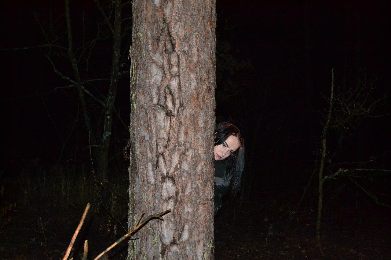 23-24.11.15 г. Ночь в лесу. Елена Руденко ( 57 фото) Xdt9tZotjpc