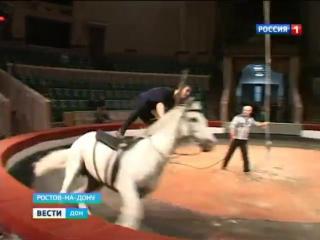 В Ростовском цирке школьники смогут попробовать себя в роли канатоходцев!