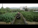 Игорь Лядов - как он достигает таких результатов