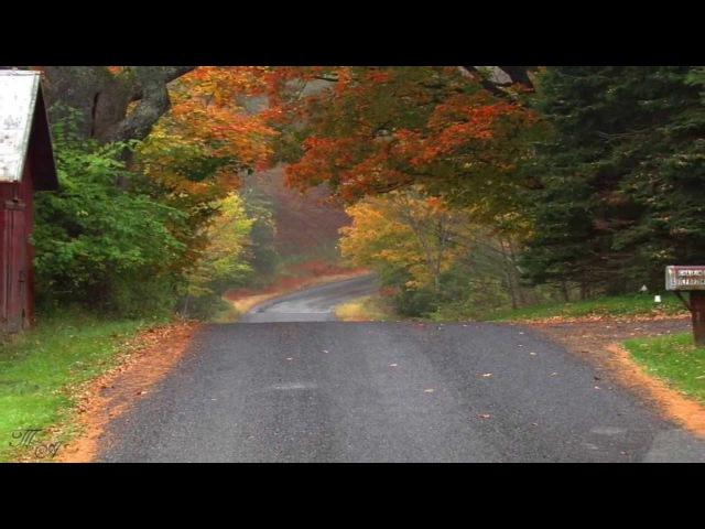 Дорога в осень... Раймонд Паулс. (Музыка из к/ф Двойной капкан)