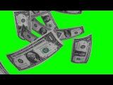 Футаж Падающие деньги на зеленом фоне GreenScreen HD