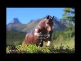 Breyer Model Horse Photography - Fall/Winter 2014