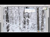 Белый-белый снег