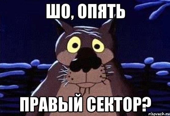 ЦИК обнародовала первые данные по выборам в Чернигове - Цензор.НЕТ 8168