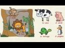 Aprender español: Los animales (nivel intermedio)