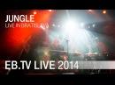 Jungle live in Bratislava (2014)