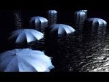 Nikonn - Umbrellas - Зонтичный