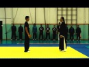 Chen Style Taiji Quan - Fighting Techniques Demonstration - 陈式 太极拳 - Combat Tai Chi