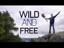 Wild And Free (Fack Ju Göhte 2) - Lena (Johannes Weber Cover)