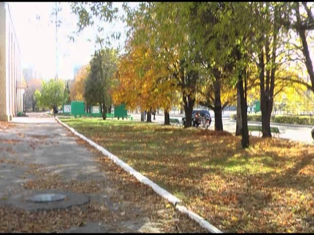 Луганская обл. г. Свердловск 2008 г.