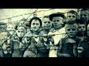 Красный берег Донорский детский концлагерь