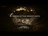 BBC Мир природы. Муравьиная Империя / Empire of the Desert Ants (2011) HD