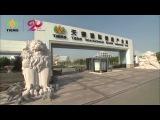 Видео-презентация продукции компании Тяньши (Tiens) - 2015г.