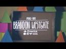 Brandon Westgate: Emerica x Zumiez