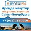 Квартиры посуточно в Санкт-Петербурге. СПБ