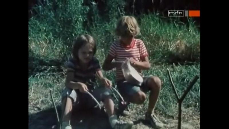 Фильм Каникулы Пипо 5 серия