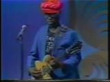 J B Hutto - Boston TV (1981) Part 2