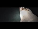 Паранормальное явление 5: Призраки в 3D (2015) Дублированный ТРЕЙЛЕР