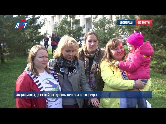 Акция «Посади семейное древо» прошла в Люберцах