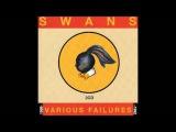 Love Will Tear Us Apart (Jarboe Version) by Swans