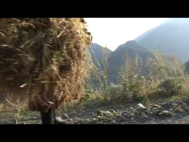 Док ф Три дагестанские новеллы 2012