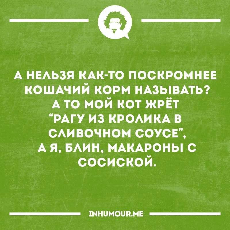 https://pp.vk.me/c629112/v629112345/35729/7d-zpDNXhbk.jpg