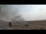 Боевики сирийской оппозиции отрезали головы террористам ИГИЛ в Алеппо (фото 18+)