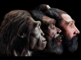 Территория заблуждений 32 выпуск (Загадки эволюции, Как на земле появились люди, Предки людей)