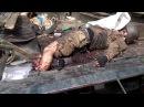 Донецк и Луганск. Ополченцы разгромили Нацгвардию - собак суки Порошенко.