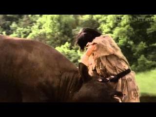Чой Бай Дао бой с быком. В фильме воин ветра