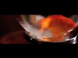 Zirenz - Timeless - 360HD -  VKlipe.com