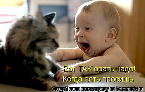 http://cs629114.vk.me/v629114457/313e2/QxAn8KGCvns.jpg