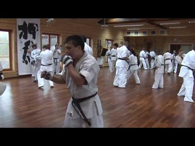 Учебные спарринги в каратэ киокушинкай (шинкиокушин)