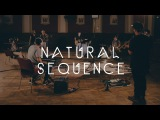 Natural Sequence - Dark Fades  Waves