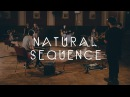 Natural Sequence - Dark Fades   Waves (LIve Session)
