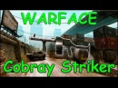 Warface - Cobray Striker