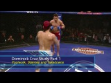BJJ Scout: Dominick Cruz Study Part 1 - Stances, Footwork and Takedowns