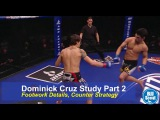 BJJ Scout: Dominick Cruz Study Part 2 - Footwork Details and Counter Strategy