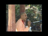 01. HH Radhanath Swami at Kaliya Ghat (Vrindavan Yatra 2004)