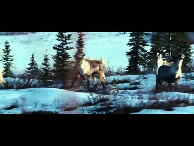 В диких условиях Into the Wild 2007 Шон Пенн Sean Penn отрывок