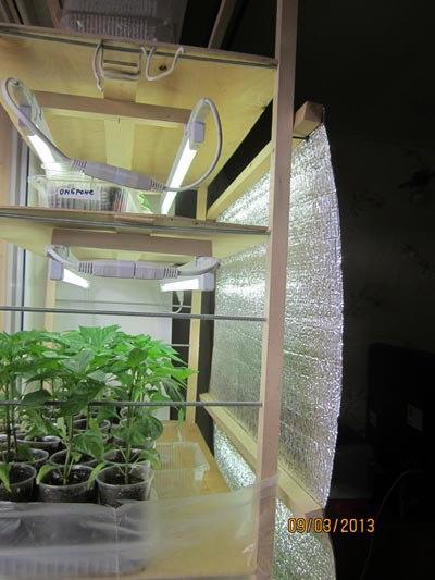 Конструкция с освещением для выращивания рассады, сделанная своими руками