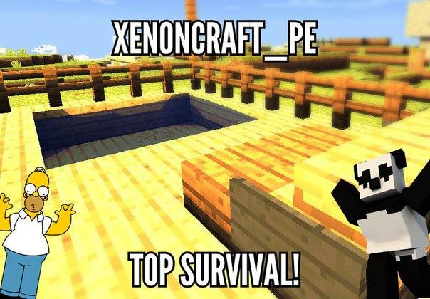 Сервер XenonCraft