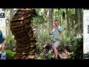 Jurassic Park Builder (Полное русское прохождение) - Эпизод 71||Познакомьтесь, Артроплевра