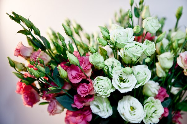 Самые популярные цветы для букетов